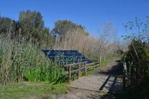 Parque Natural de la Albufera. Fly and Grow