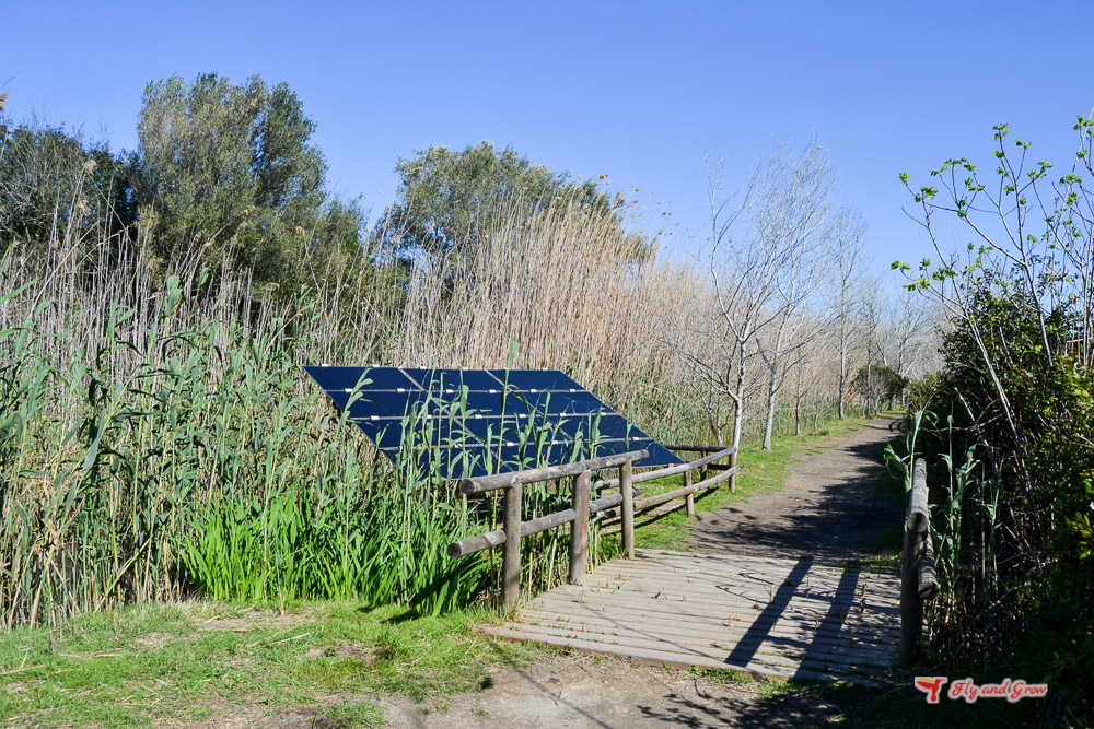 paneles solares en la albufera