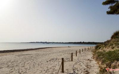 Playa es Carbó: la playa más virgen de Mallorca