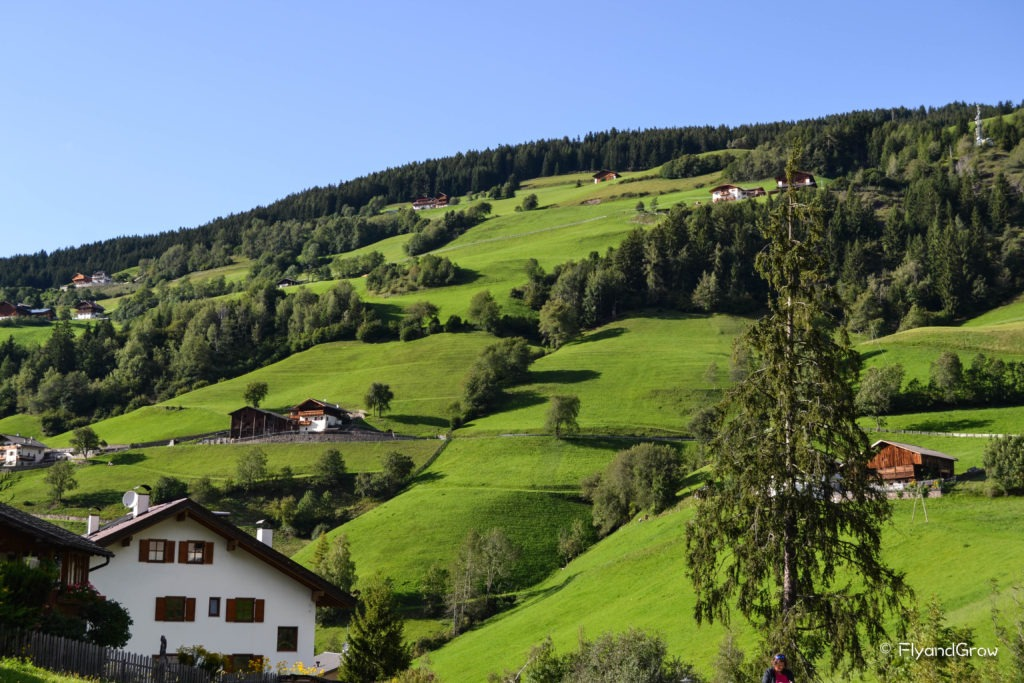 Pradera en Dolomitas