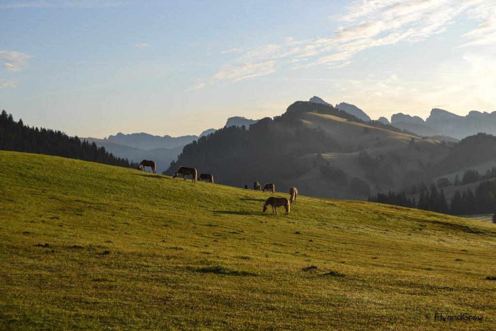 Ruta en las Dolomitas
