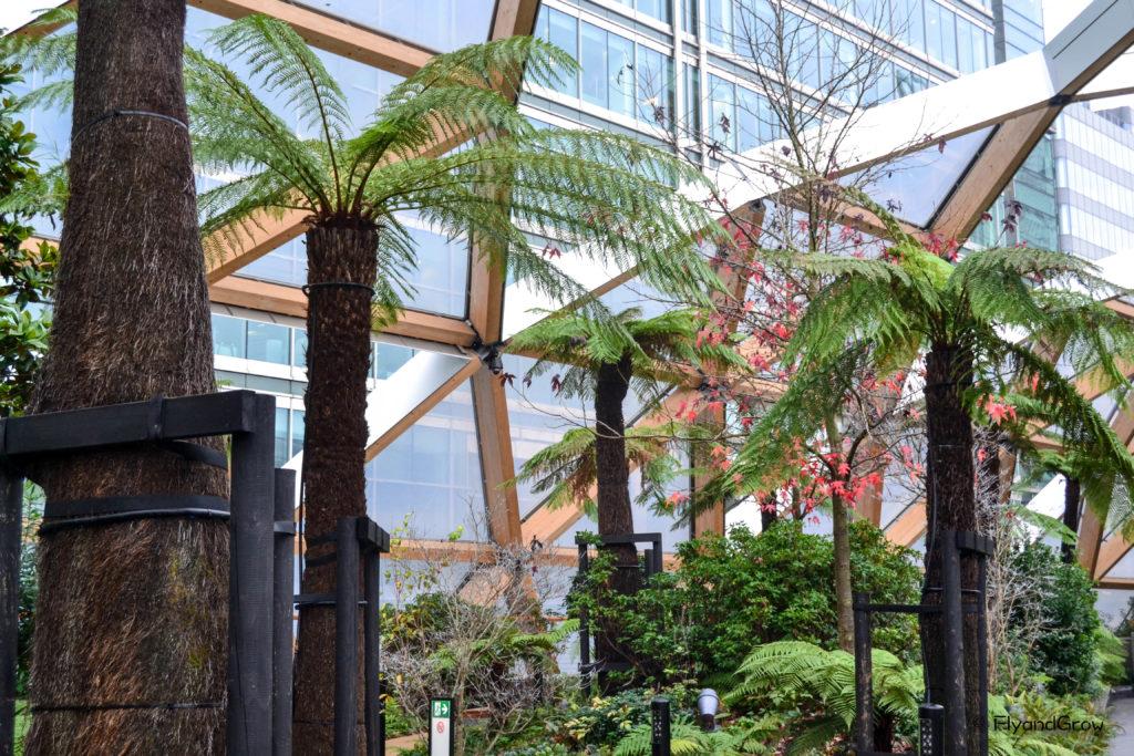 Jardin de Canary Wharf