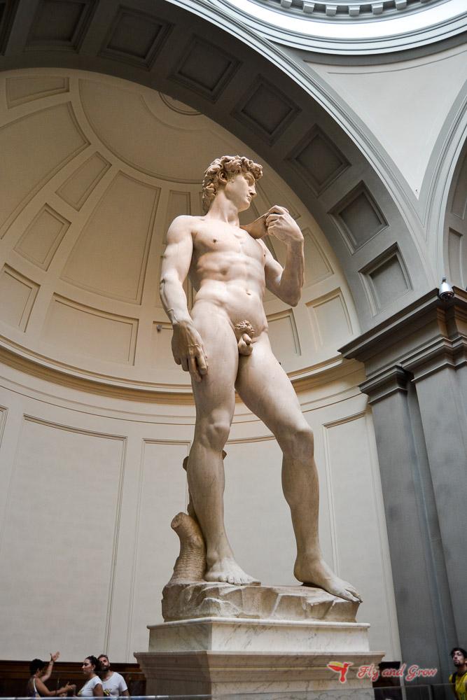 Davide de Michelangelo