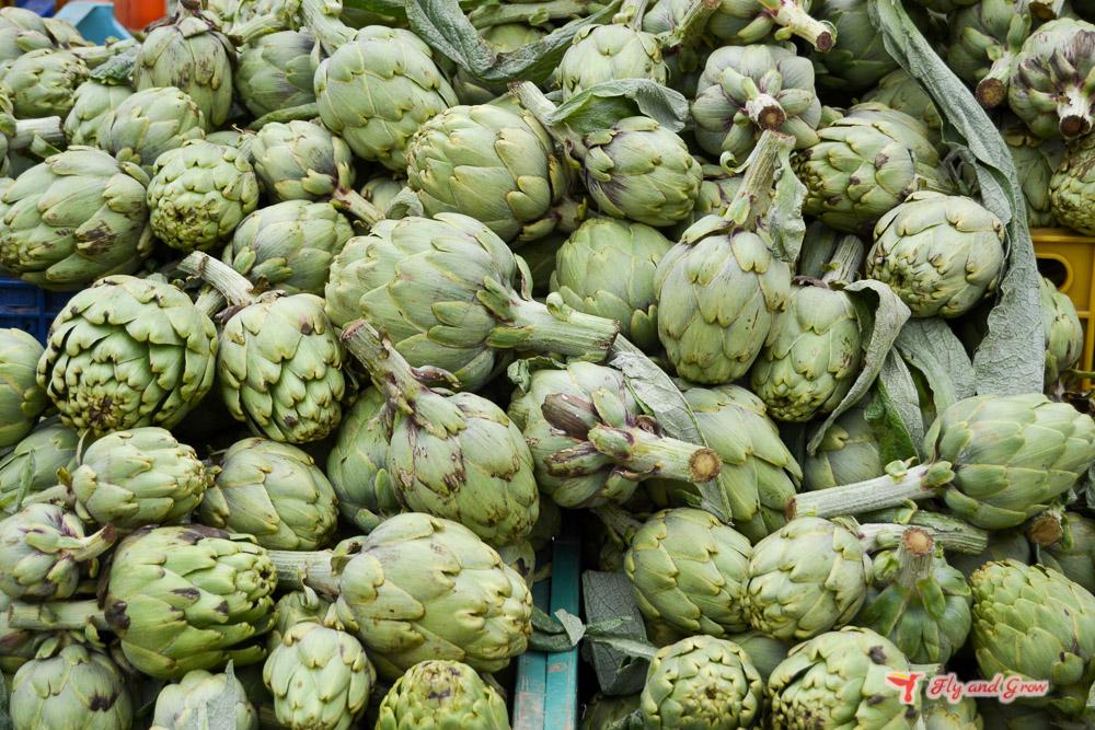 Consumo sostenible de alcachofas de proximidad