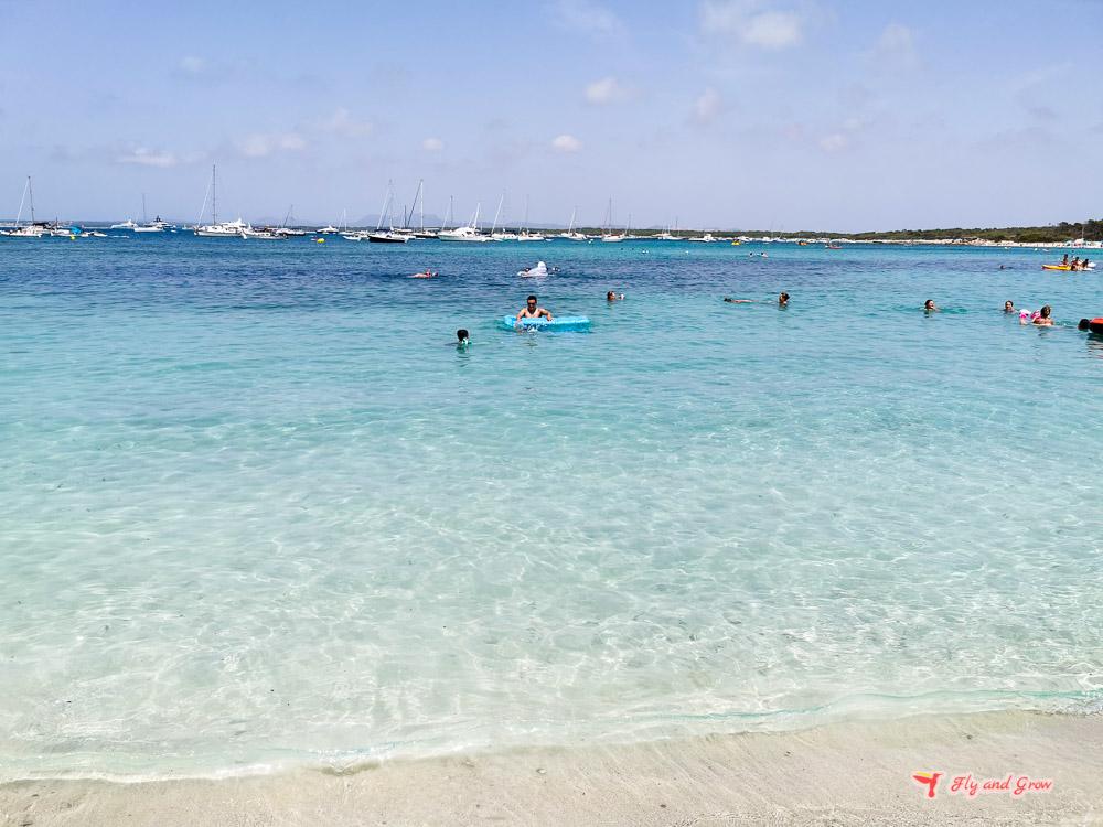 playa del moli de s'estany