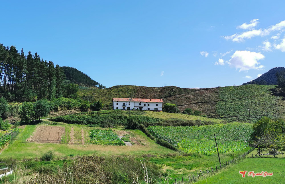 que ver en País Vasco en un semana