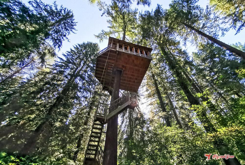 Dormir 20 metros más cerca del cielo en las Cabañas en los árboles del País Vasco